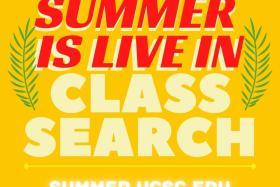 logo for summer session website